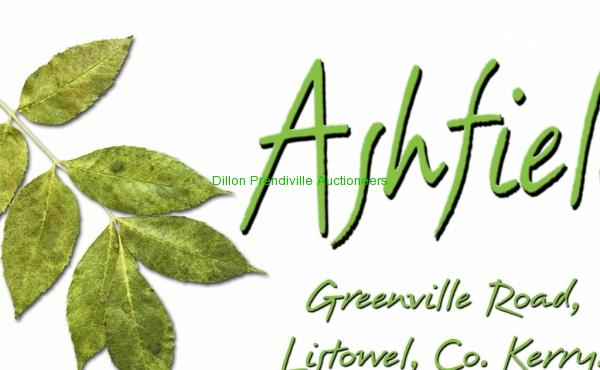 ashfield logo (1)