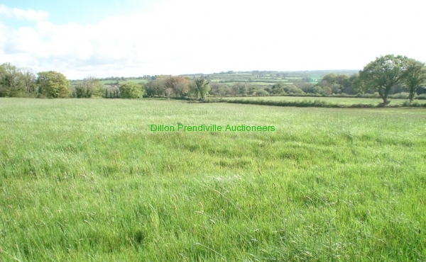 480 Springmount Duagh PT 25042019 (28)