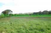 480 Springmount Duagh PT 25042019 (25)